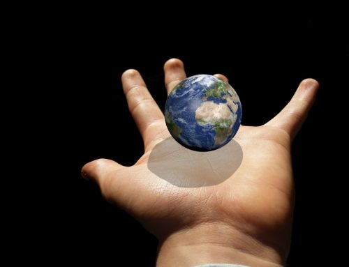 Não somos donos do mundo!